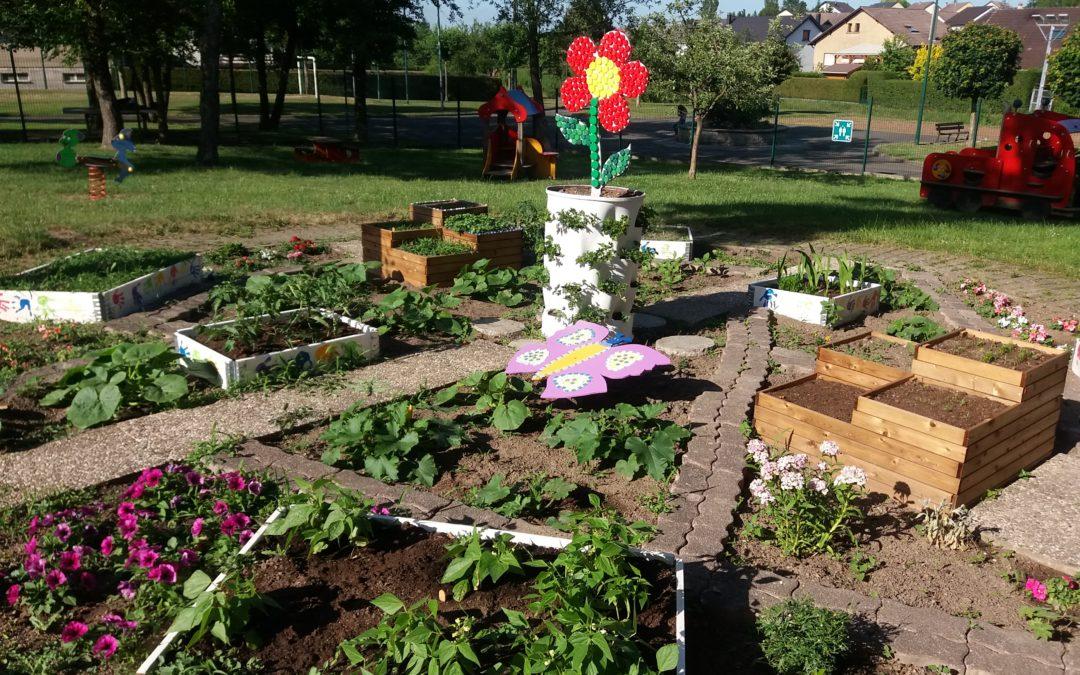 Un jardin pédagogique à l'école maternelle du Chambourg